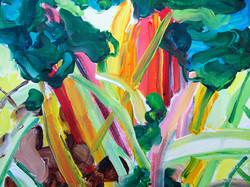 Rainbow Chard, 8 x 10, NFS