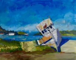 Pt. Reyes Shipwreck