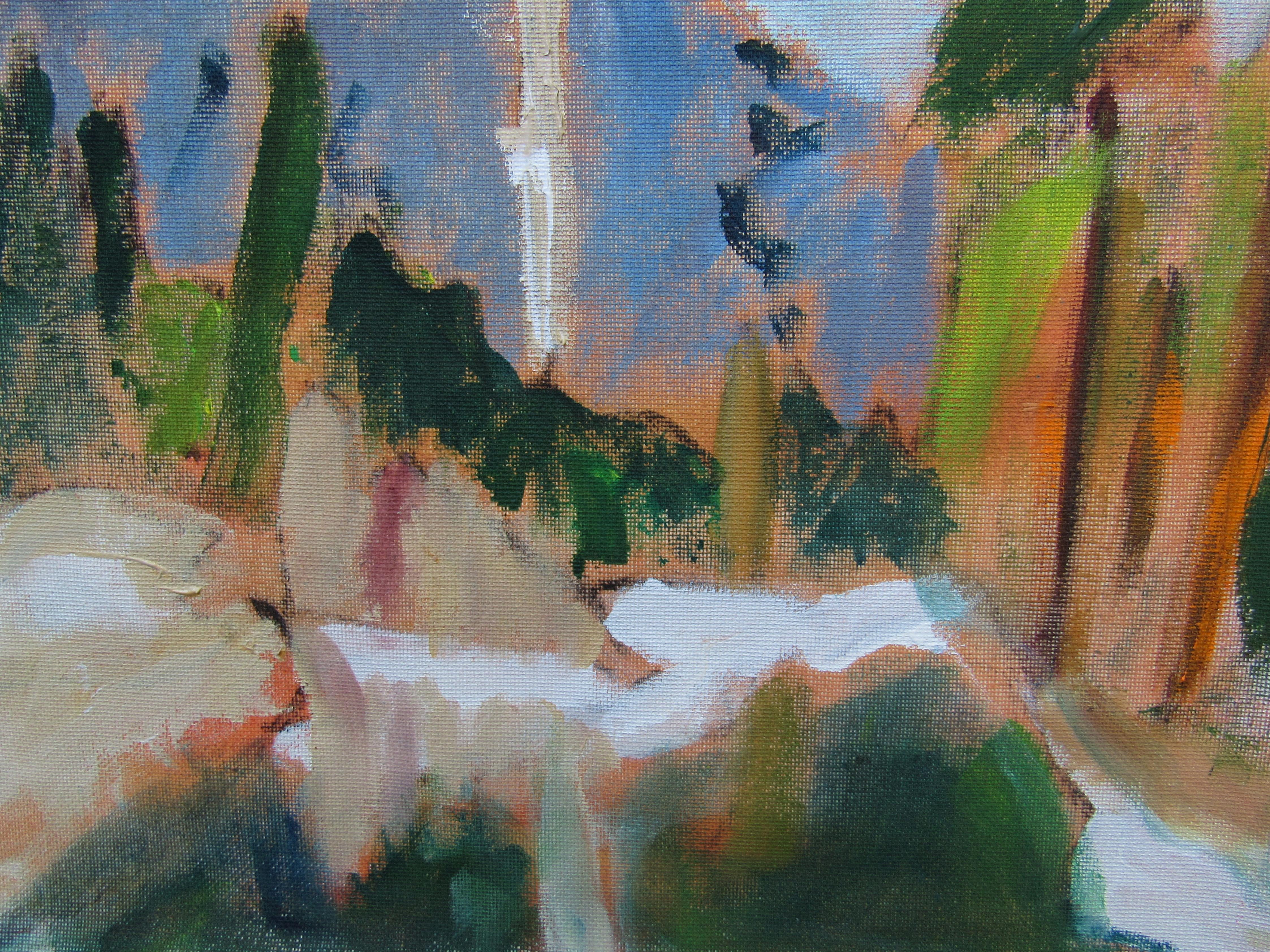 9 x 12 Yosemite Study.jpg