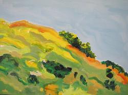 Matisse Mound