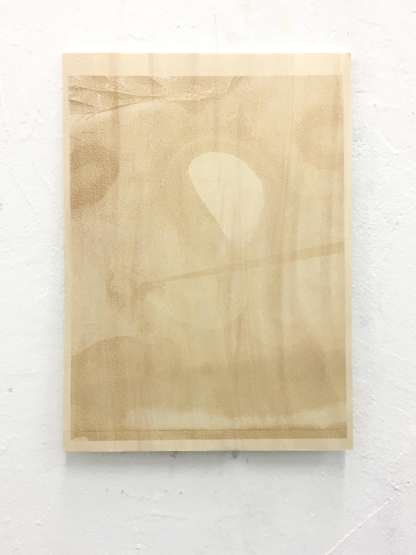 Woodengrave, 2017. Engraved plywood.