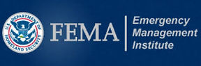 FEMA EMI logo.jpg