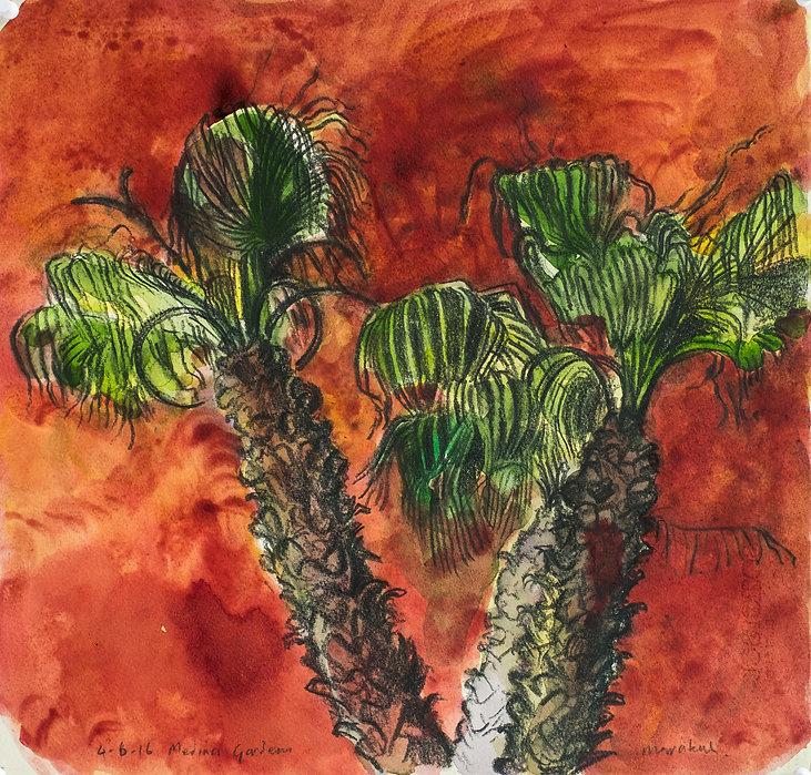Marrakech Suite- Medina Gardens, 4-6-16 Crayon and watercolour on paper. Simon Page