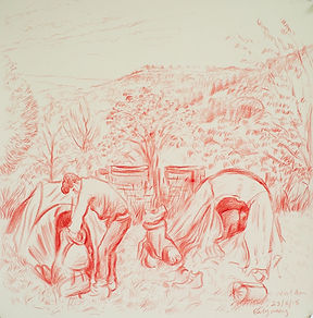 Early morning, West Acre packing up, Villes Hautes, 23-6-15. Crayon on paper. Simon Page.