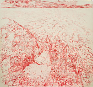 Tanera Mor, drawing I, Summer Isles. Crayon on paper. Simon Page 2014