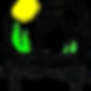 sxfn_logo.png