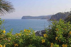 Enjoy the warm ocean breeze