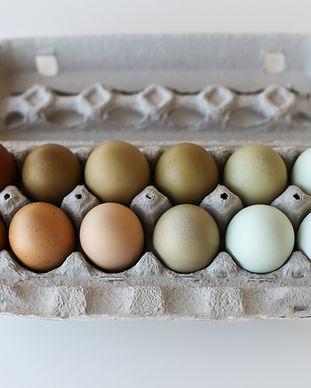 egg freezing.jpg