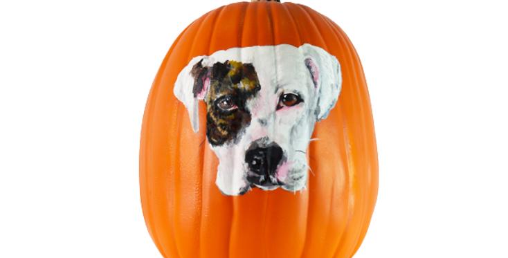 Hand Painted Pet Pumpkins