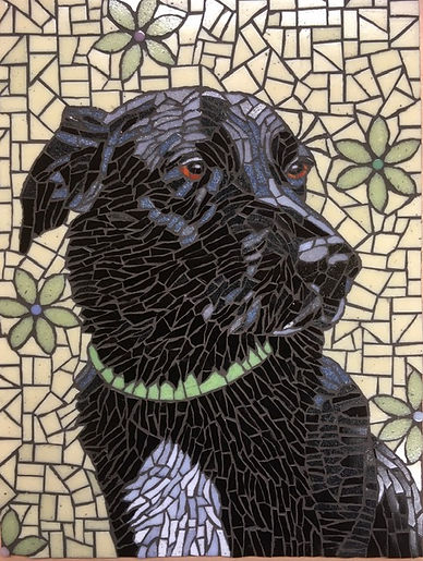 Cally_dog_mosaic_portrait.jpg