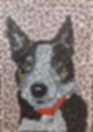 mosaic_portrait_of_dog_lucy.jpg