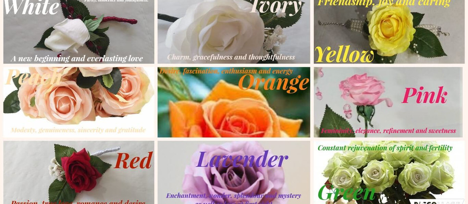 Rose Colour Meanings