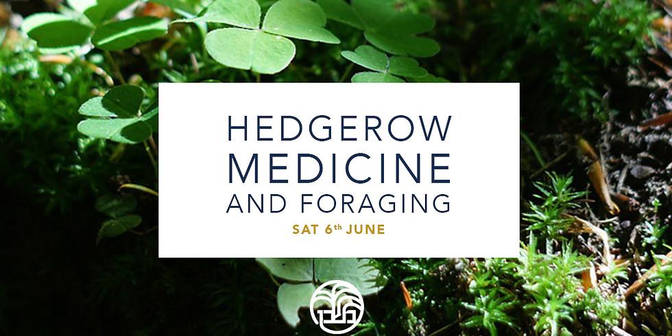 Hedgerow Medicine & Foraging
