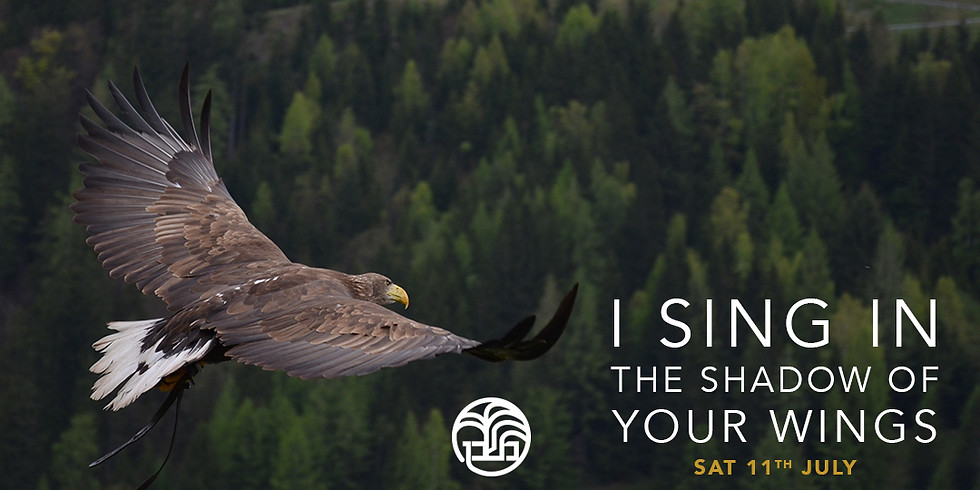 I Sing in the Shadow of Your Wings