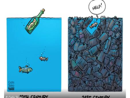 Panorama des solutions pour pallier au plastique