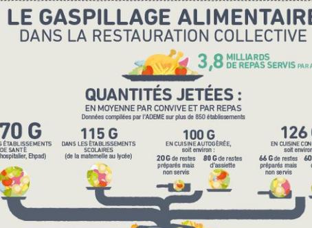 Le gaspillage alimentaire : quelles solutions ?