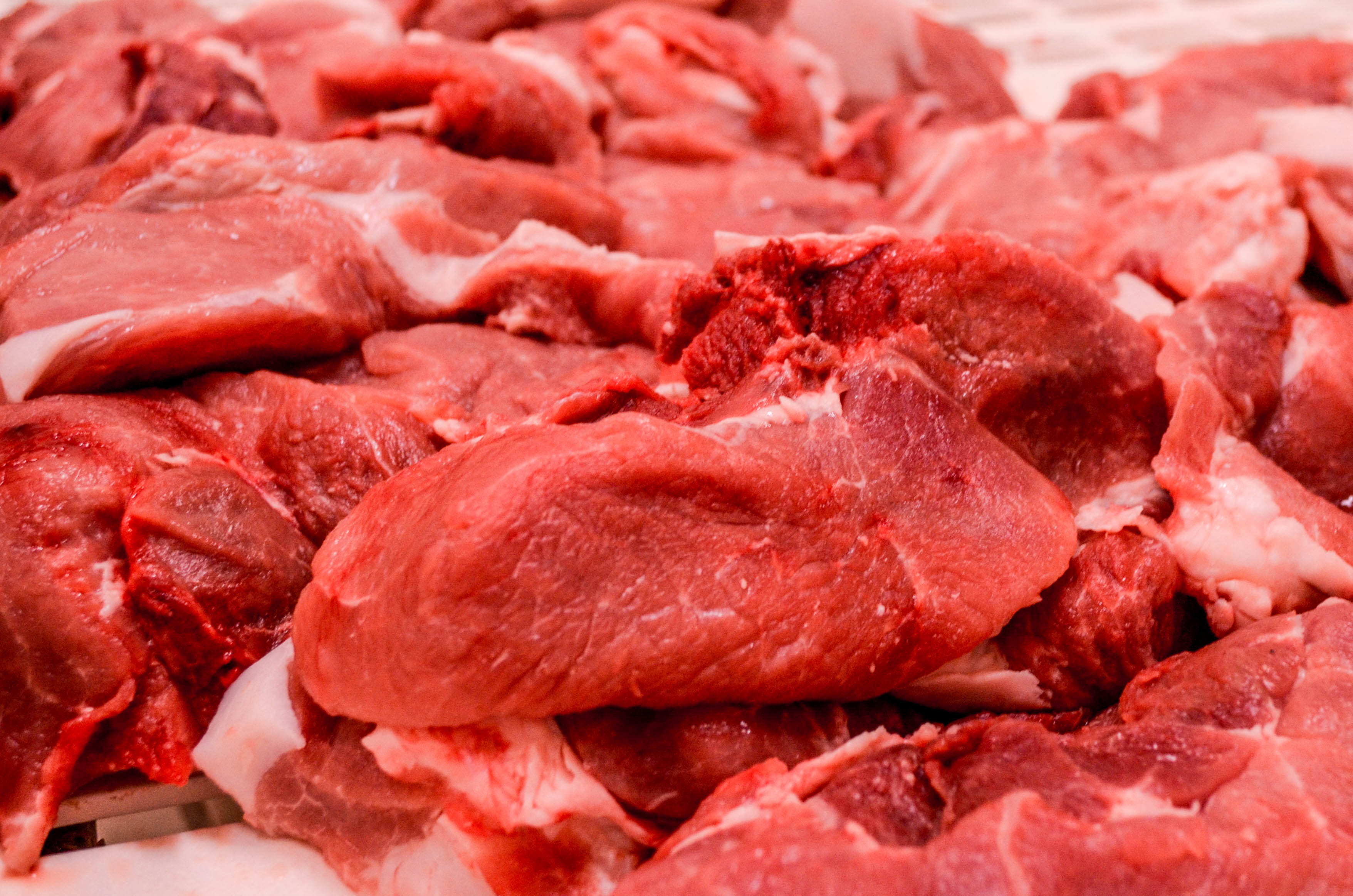 Carne di suino