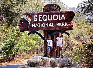 sequoia-national-park-with-kids-dsm-1.jp