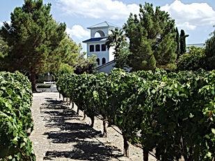 nevada-winery-pahrump-las-vegas-1.jpg