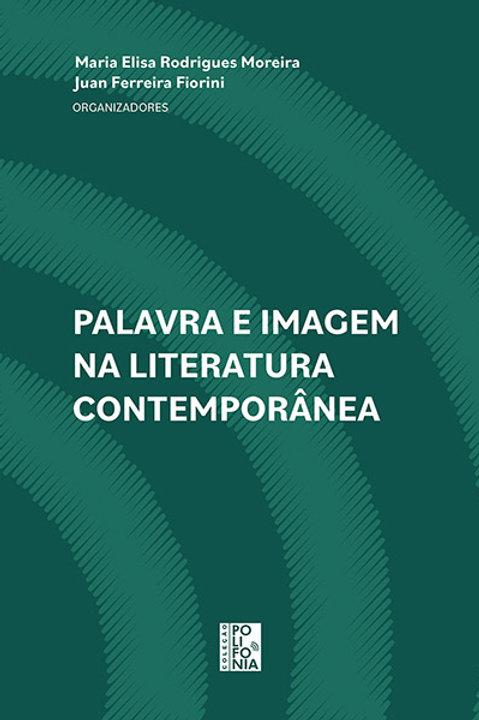 Palavra e imagem na literatura contemporânea