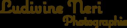 nouveau_logo_marron_foncé.png