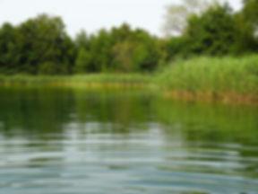 lake-555829_1920.jpg