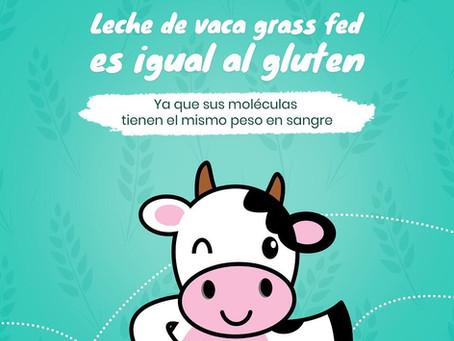 Leche de vaca grass fed es igual al gluten