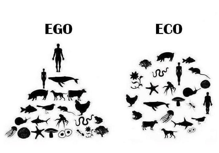 ego vs eco - go vegan