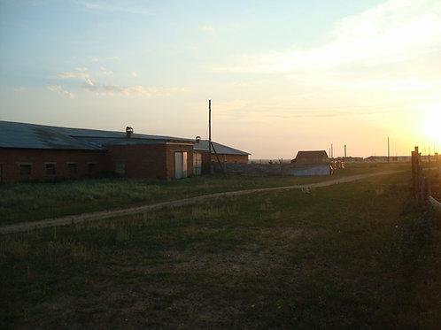 Земельный участок, ул. Центральная, п. Кужунтай