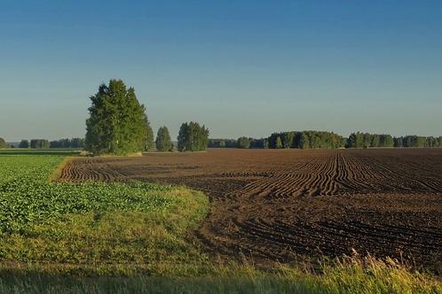 Земельный участок, п. Кайраты