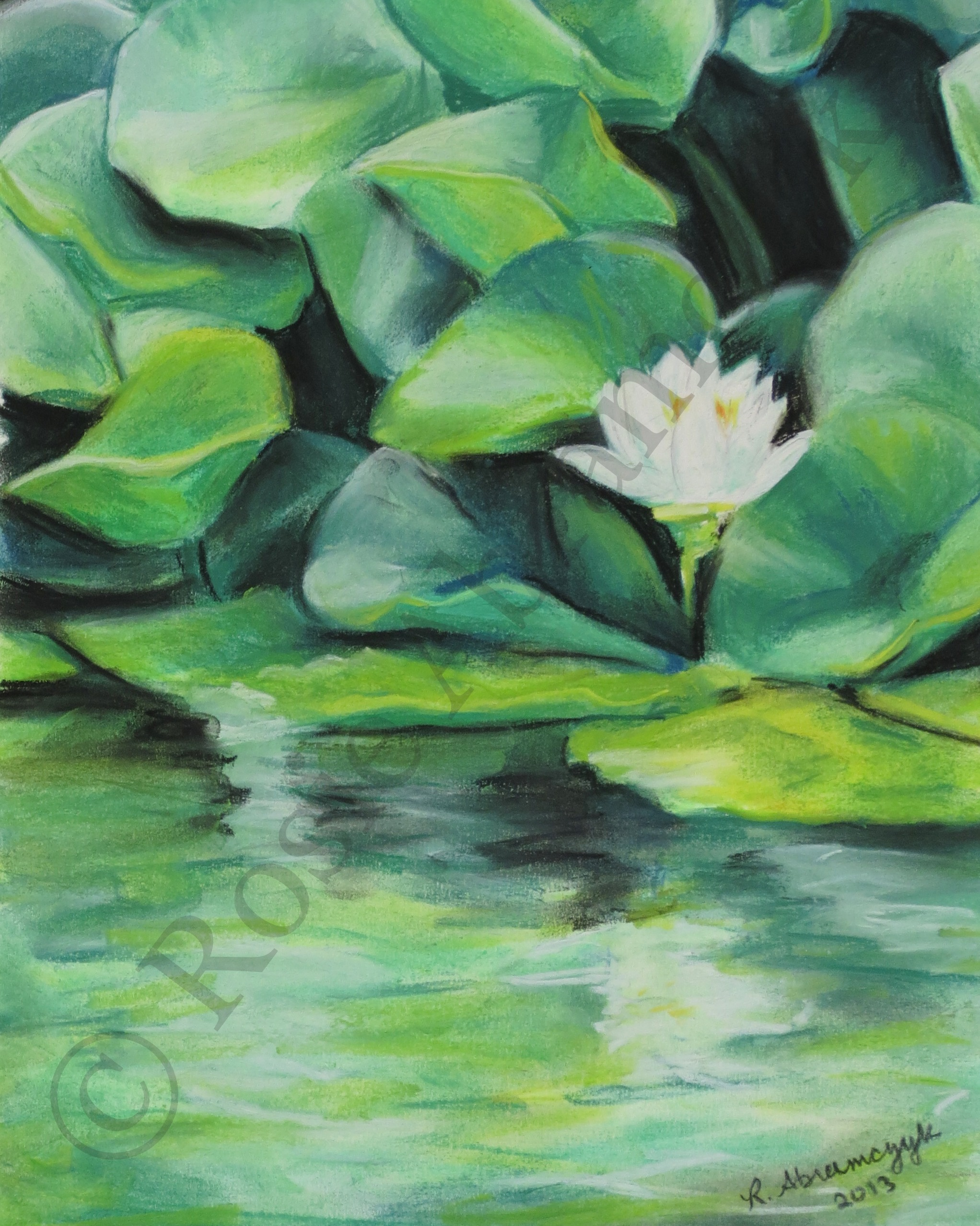 White Lily at Francis Park Pond, by Rosie Abramczyk, Chalk Pastel, 2013