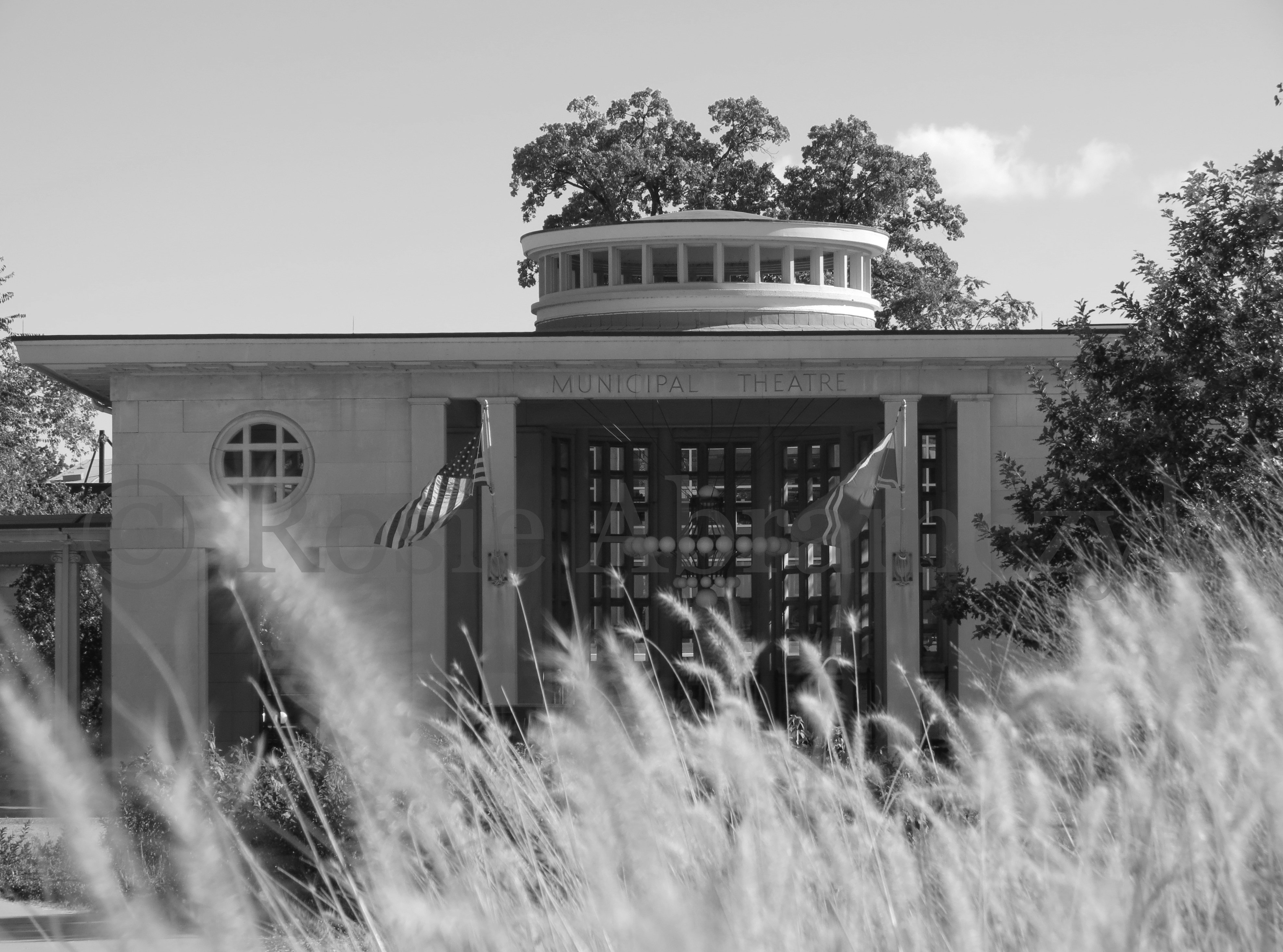The Muny, St. Louis, MO, by Rosie Abramczyk, Photo, 2013