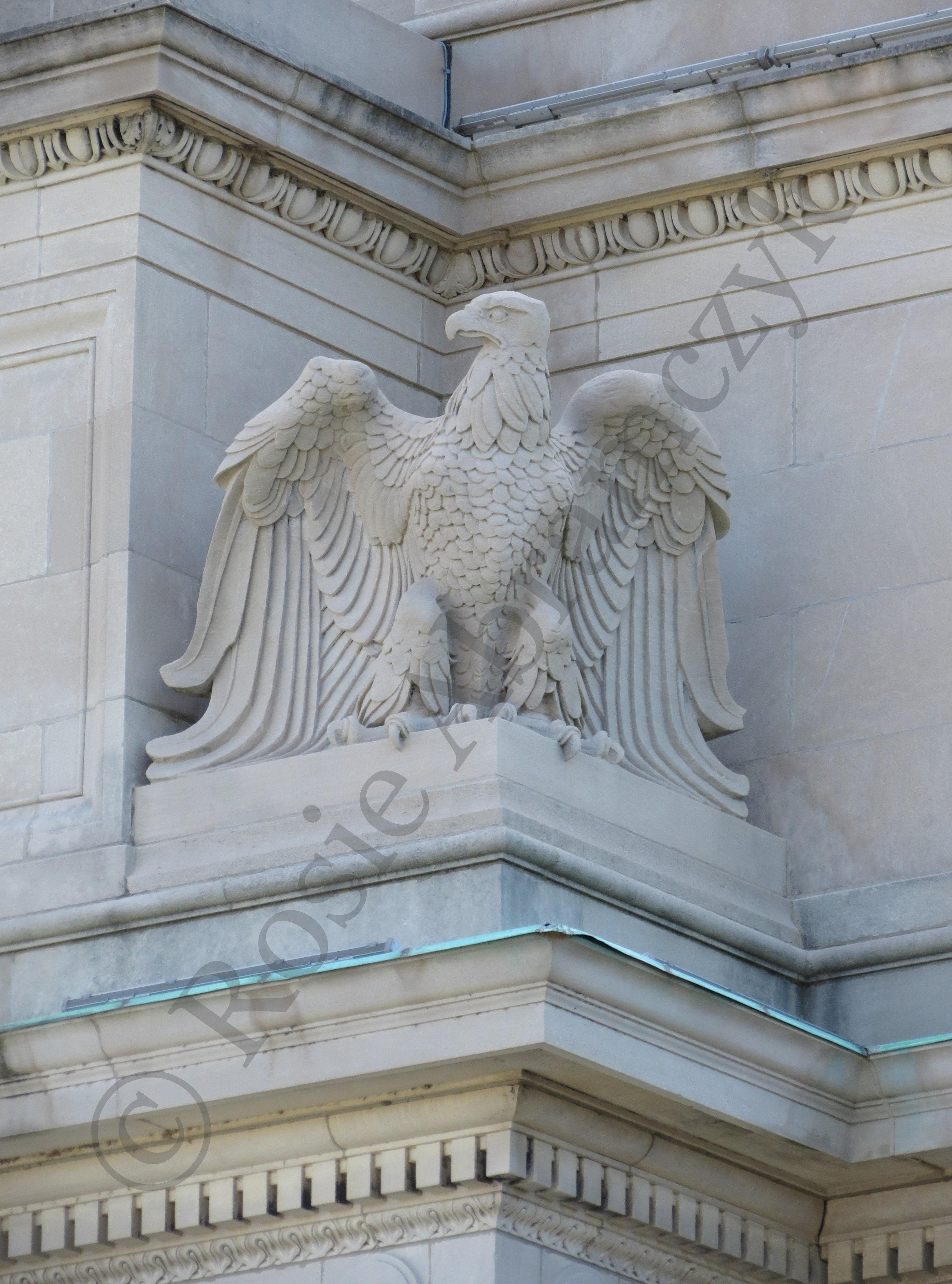 Eagle at The Missouri History Museum, by Rosie Abramczyk, Photo, 2013