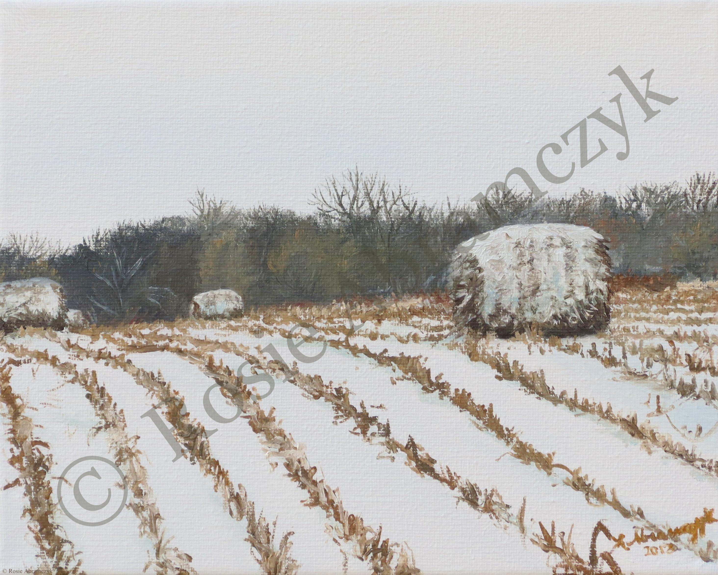 Snow Dusted Wheat Field in Beloit, KS, by Rosie Abramczyk, Oil Paint, 2013