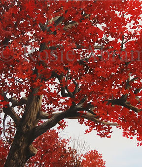Antique Autumn Oak, by Rosie Abramczyk,