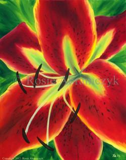 Red Oriental Lily, Rosie Abramczyk, Oil, 2012