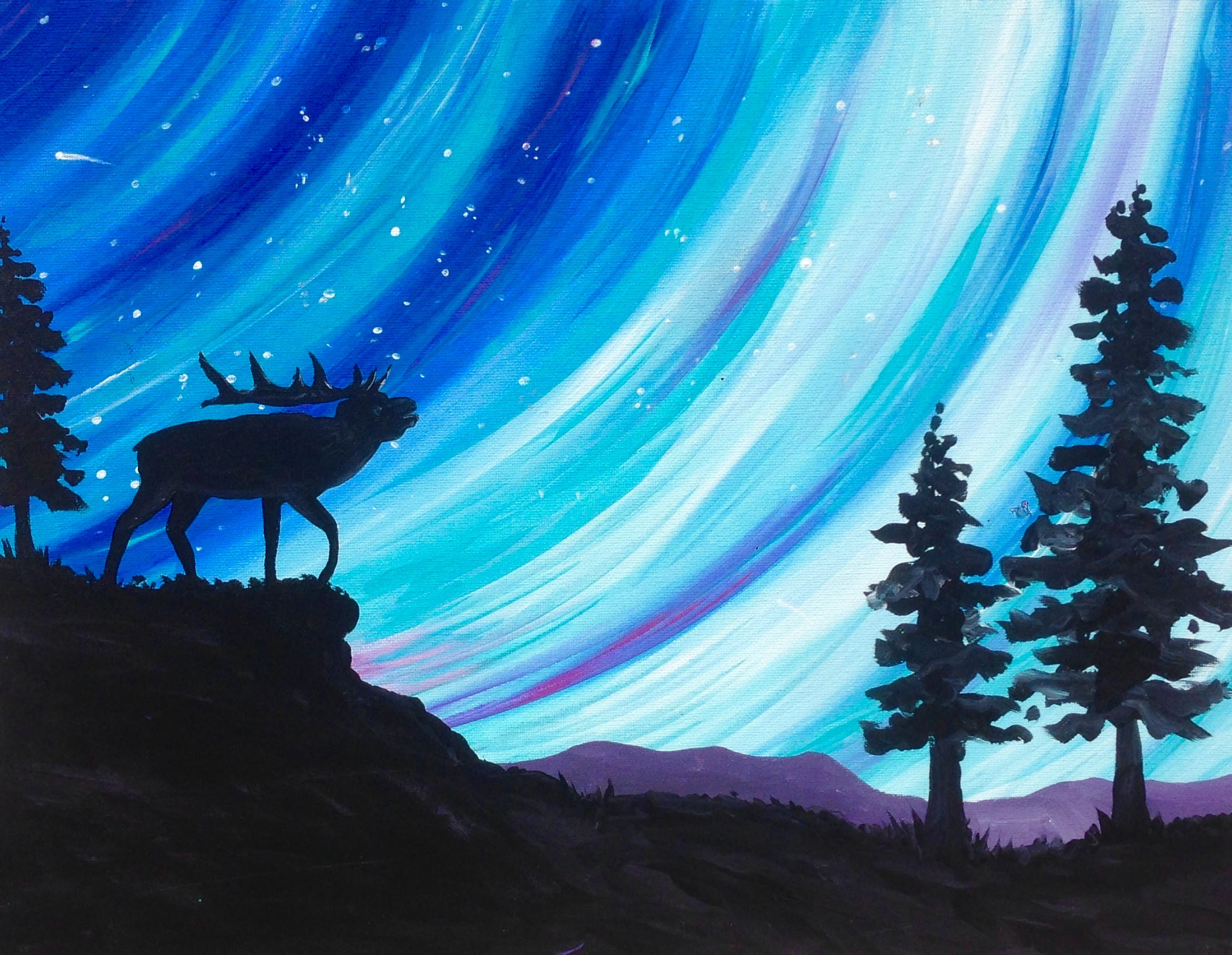 Elk Northern Lights