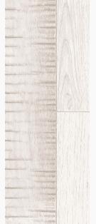 Forester Cambrium Interceramic.png