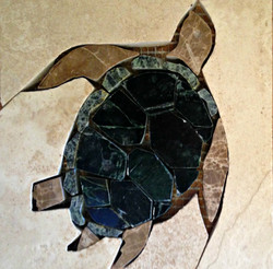 """""""Turtle"""""""