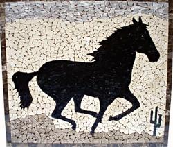 """Black Horse"""