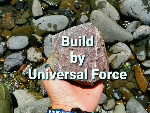 Build by Universal Force
