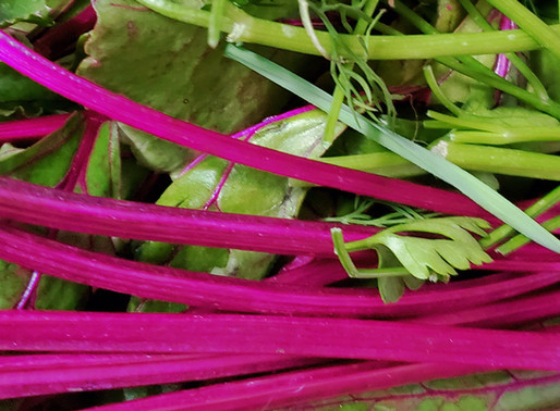 Beet leaves and greens