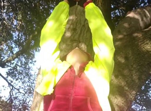 Receiving The Light (TikTok)