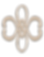 IVA_web_dising-logo_web_home_beige_100tr