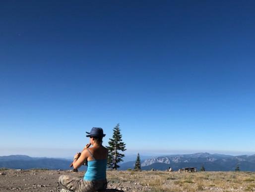 Mt Shasta connection