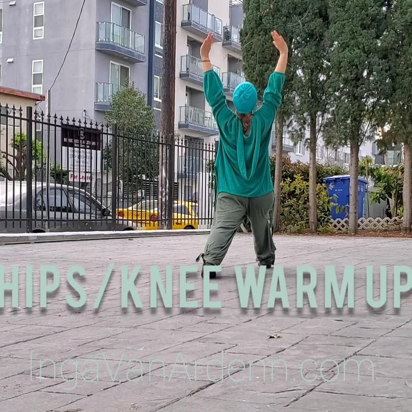 IVA Martial Arts Hips/Knee Warm Up