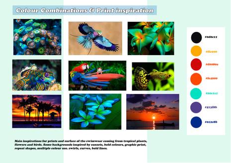 Shara Johnson Design - Sanavay Swimwear SS18 - Colour Combinations