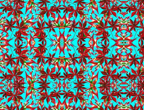 Shara Johnson Design - Sanavay Swimwear SS18 - 'Red Heat' print Design