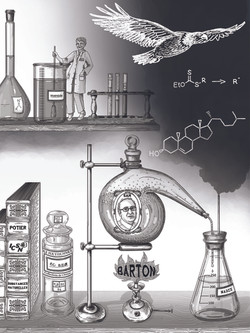 illustration-sam3-BD