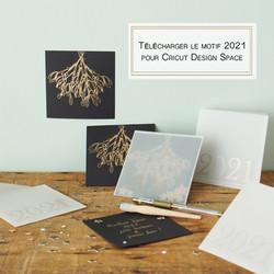 telechargement-2021-carte-de-voeux-bleu-